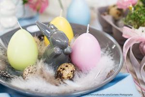Osterhase mit Eiern